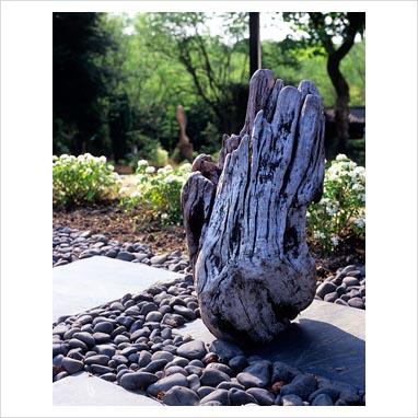 plantar piedras 0070403