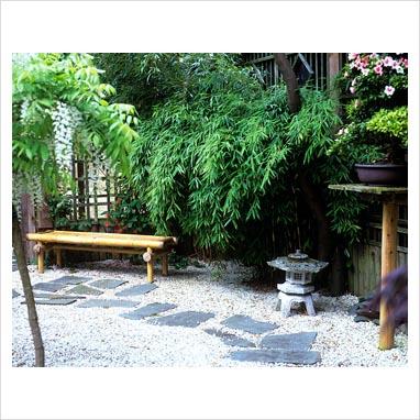 caminos en el jardin 0070481