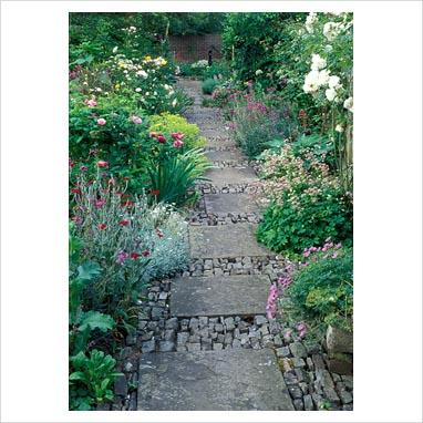 caminos en el jardin 0072675