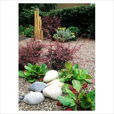 plantar piedras 0074578