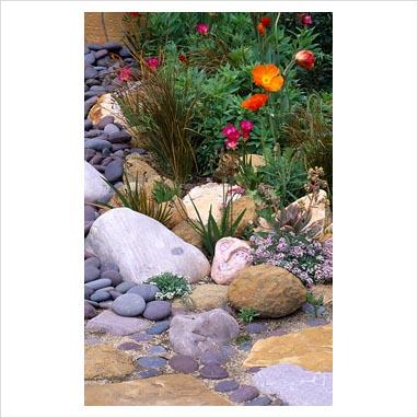 plantar piedras 0074785