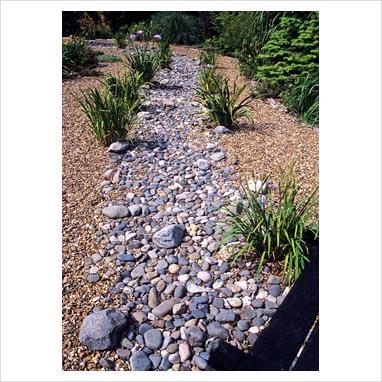 plantar piedras 0075100