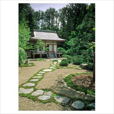 caminos en el jardin 0080872