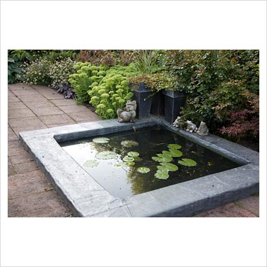 Gap Photos Garden Plant Picture Library Small Square Pond With Frog Ornaments Gap Photos