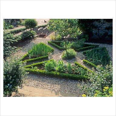 Gap photos garden plant picture library herb and for Parterre vegetable garden design