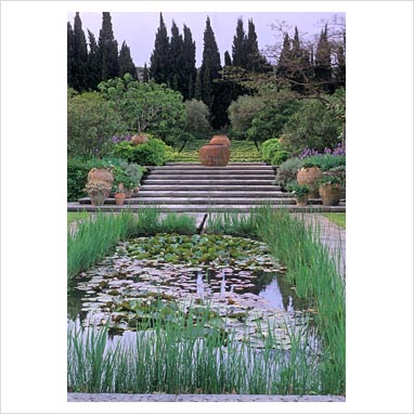 Gap Photos Garden Plant Picture Library Provencale Mediterranean Style Garden With Small