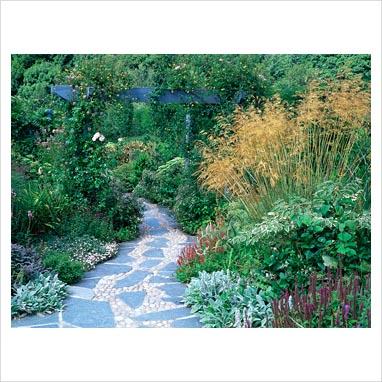 caminos en el jardin 0085056