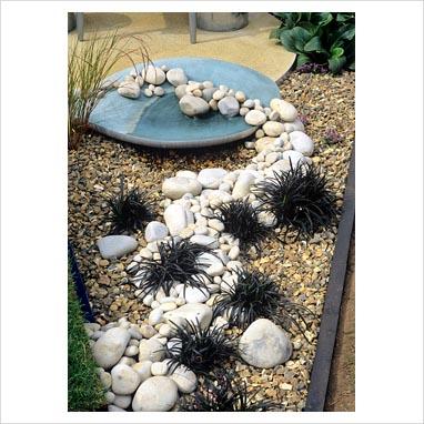 plantar piedras 0085453
