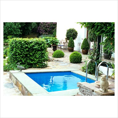 Small garden pool for Small swimming pools for gardens