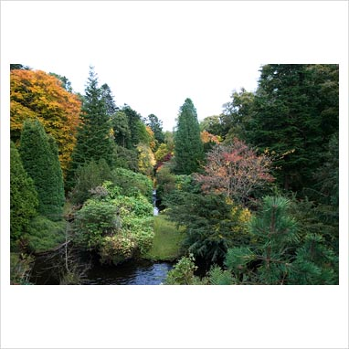 Gap photos garden plant picture library autumn for Stobo water gardens