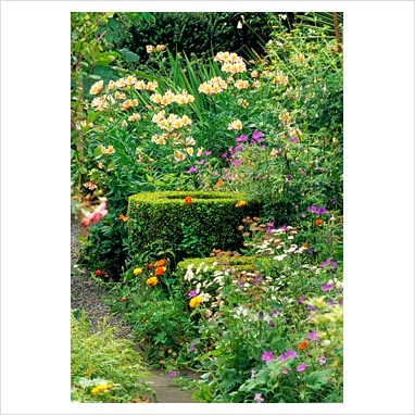 Her skill as a garden designer