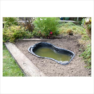 Gap Photos Garden Plant Picture Library Garden Pond Project Step By Step Moulded