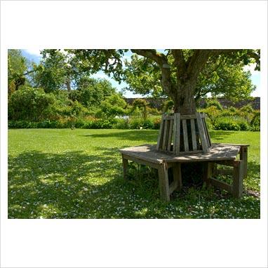Gap photos garden plant picture library circular for Tree trunk garden bench