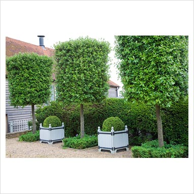 Artificial Trees   Silk Trees For Commercial Use   Outdoor