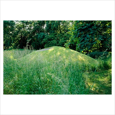 Gap photos garden plant picture library grass turf for Mounding grass