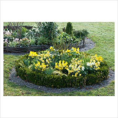 Round Flower Bed : GAP Photos - Garden & Plant Picture Library - Round flower bed with ...