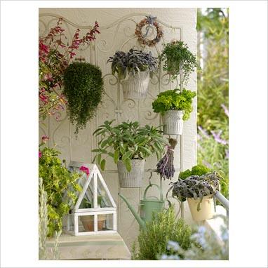 Lo zen e l\'arte di abbellire un balcone - Pagina 3 - Forum Giardinaggio