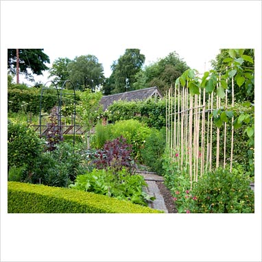 Gap Photos Garden Plant Picture Library Vegetable Garden Preen Manor Shropshire Gap