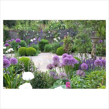 GAP Photos Garden Plant Picture Library Purple