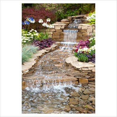 Gap Photos Garden Plant Picture Library Pond With Stream And Waterfall Surrounded By