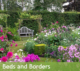 Beds and Borders