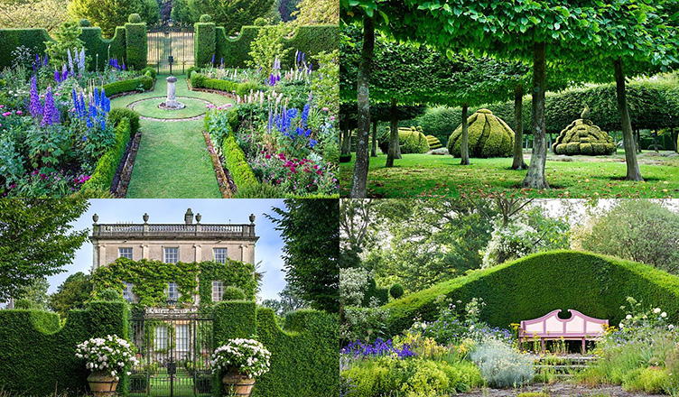 GAP Gardens Have Been Appointed The Sole Representative Of Photographic Collection From HRH Prince Wales At Highgrove