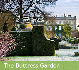 The Buttress Garden