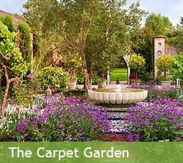 The Carpet Garden